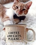 Coffee & Cats, Please.jpg